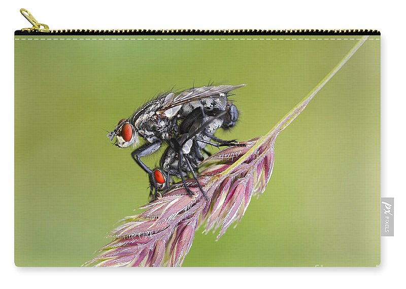 Detail Carry-all Pouch featuring the photograph Reproduction - At The Height Of Bliss by Michal Boubin