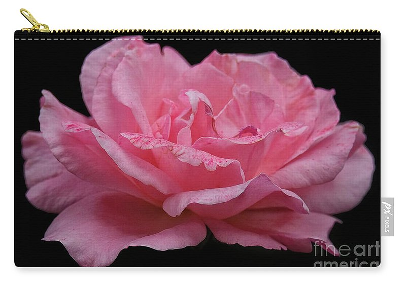 Rose - Flower Carry-all Pouch featuring the photograph Rose - Flower by Dorival Moreira