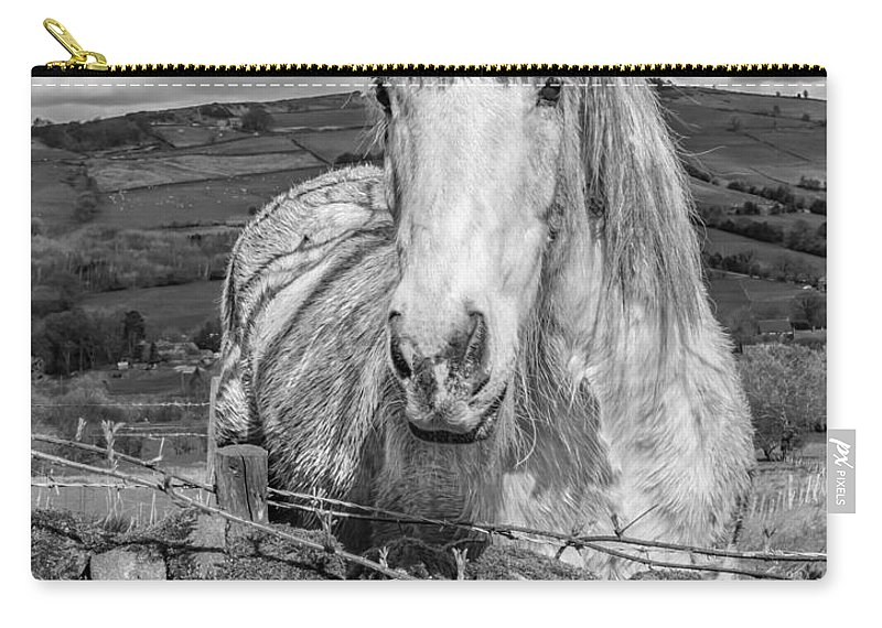 Birds & Animals Carry-all Pouch featuring the photograph Rustic Horse by Nick Bywater