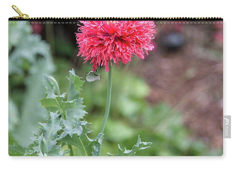 Salmon Poppy Carry-all Pouch featuring the photograph Salmon Poppy by Michael Bessler