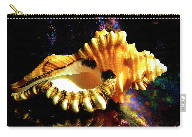 Frank Wilson Carry-all Pouch featuring the photograph Seashell Cymatium Lotoium by Frank Wilson