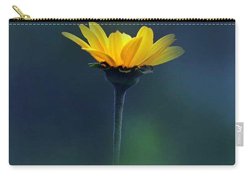 Floral Carry-all Pouch featuring the photograph Shine by Debbie Nobile