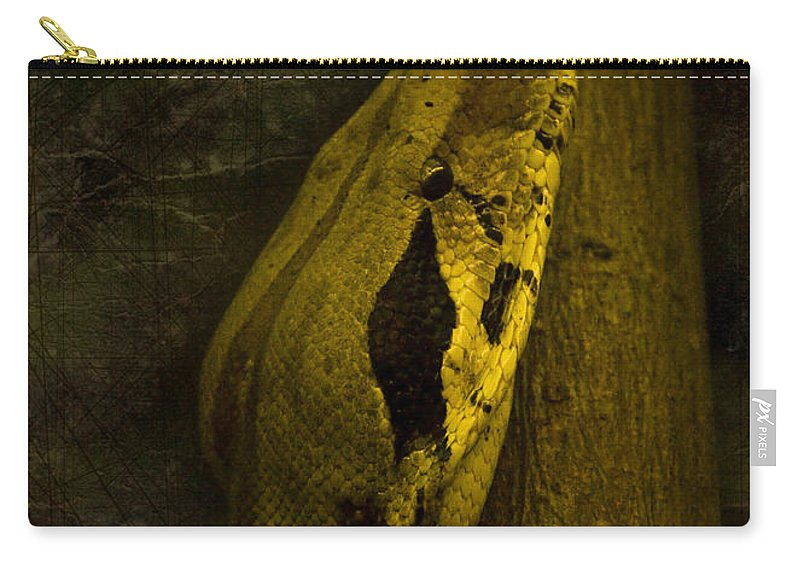 Black Snake Carry-all Pouch featuring the photograph Snake by Svetlana Sewell