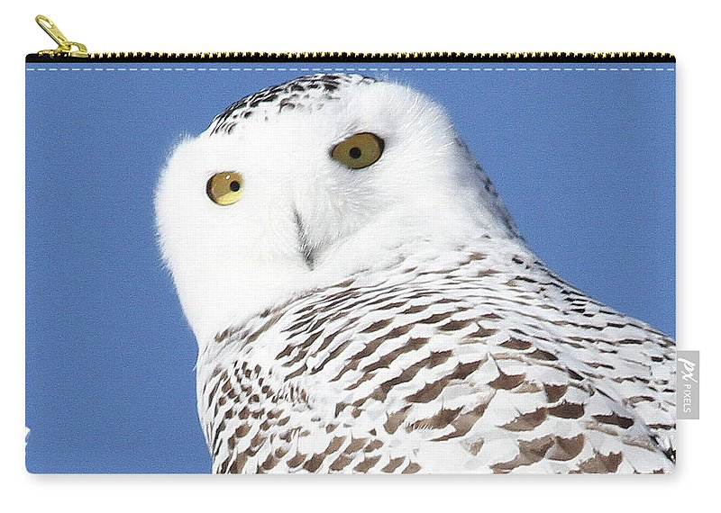 Owl Carry-all Pouch featuring the photograph Snowy Owl by Marsha Ewing