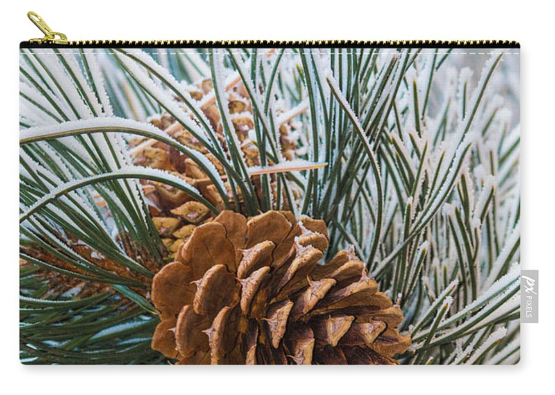 Christmas Carry-all Pouch featuring the photograph Snowy Pine Cones by Dawn Key