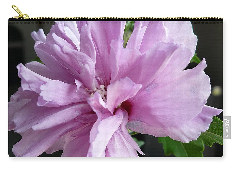Phoyography.hibiscus Flower Floral Bloom Bush Pink Carry-all Pouch featuring the photograph So Pink by Karin Dawn Kelshall- Best