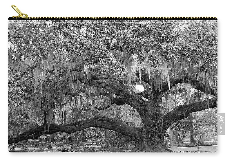 Tree Carry-all Pouch featuring the digital art Sprawling Live Oak by DigiArt Diaries by Vicky B Fuller