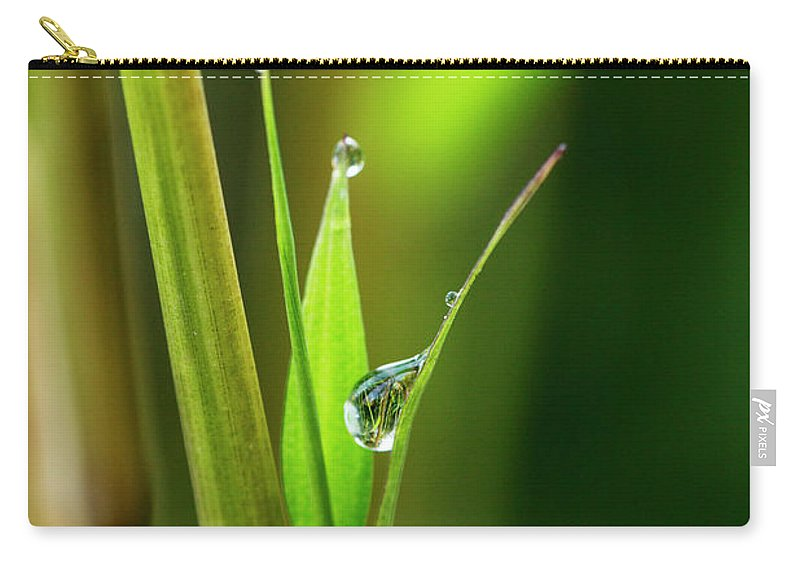 Bamboo Carry-all Pouch featuring the photograph Spring Rain by Photopoint Art