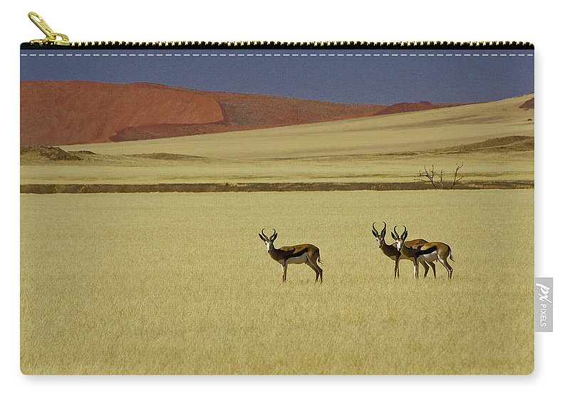 Africa Carry-all Pouch featuring the photograph Springbok At Sossusvlei by Michele Burgess