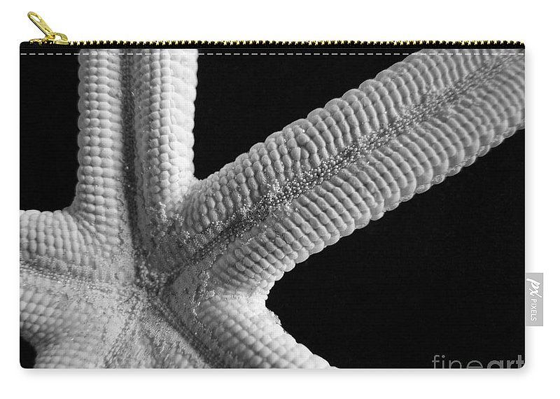 Mary Deal Carry-all Pouch featuring the photograph Starfish Underworld by Mary Deal