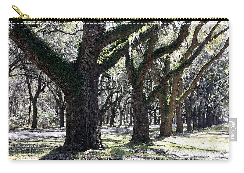 Row Of Trees Carry-all Pouch featuring the photograph Strong Trees In The South by Carol Groenen