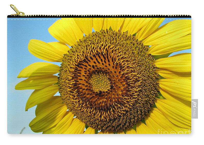 Sunflower Carry-all Pouch featuring the photograph Sunflower Series by Amanda Barcon
