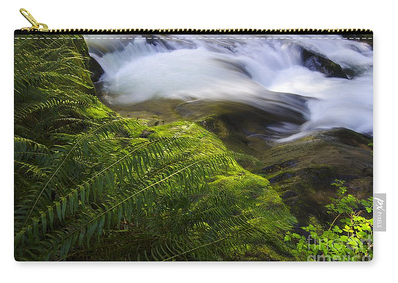 Sweet Creek Carry-all Pouch featuring the photograph Sweet Creek Oregon 11 by Bob Christopher