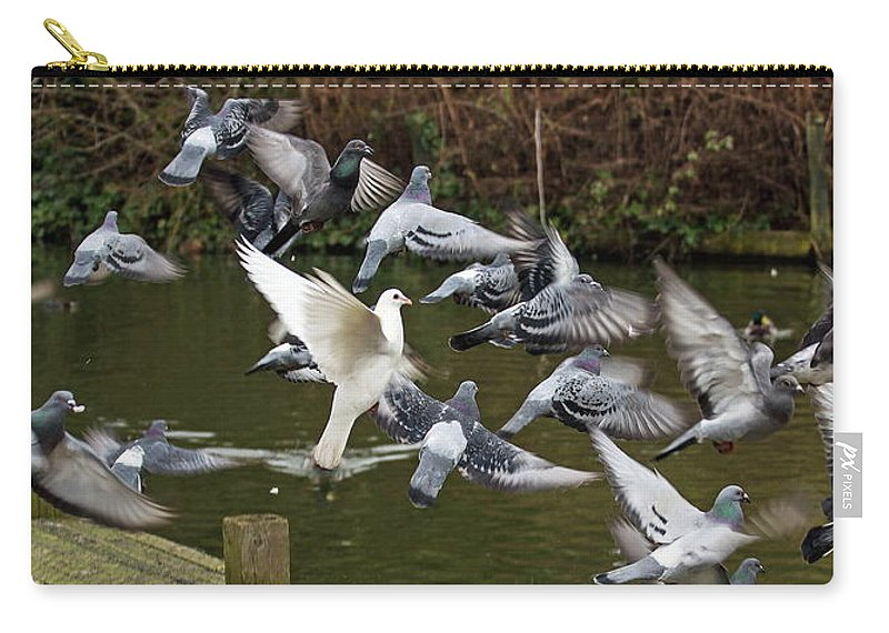Pigeons Carry-all Pouch featuring the photograph Take Off by Jeff Townsend