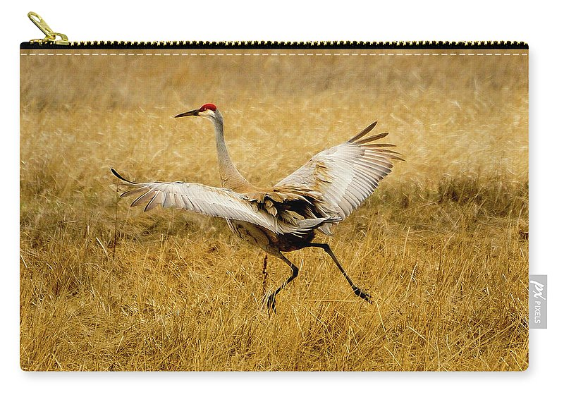 Sandhill Crane Carry-all Pouch featuring the photograph Taking Flight by Greg Norrell