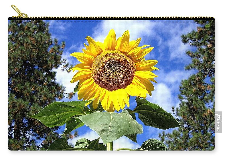 Sunflower Carry-all Pouch featuring the photograph Tall And Sunny by Will Borden