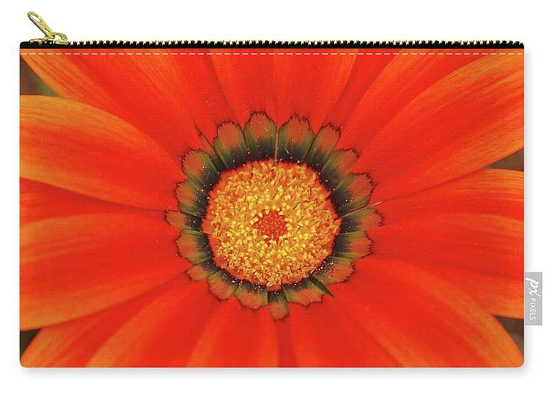Daisy Carry-all Pouch featuring the photograph The Beauty Of Orange by Lori Tambakis