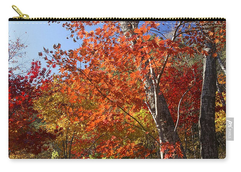 Autumn Carry-all Pouch featuring the photograph The Colors Of Autumn by Michele Burgess