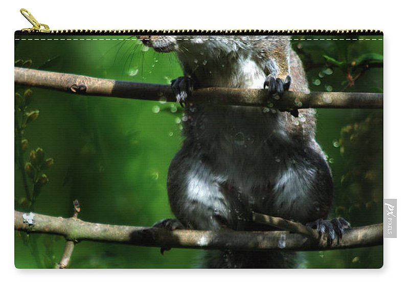 Squirrel Carry-all Pouch featuring the photograph The Squirrel From Fairyland by Angel Ciesniarska
