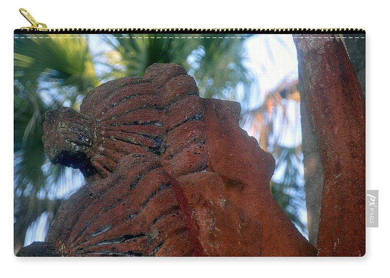 Timucuans Carry-all Pouch featuring the photograph Timucuans by David Lee Thompson