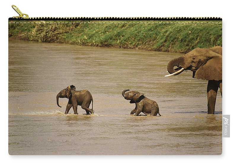 Africa Carry-all Pouch featuring the photograph Tiny Elephants by Michele Burgess