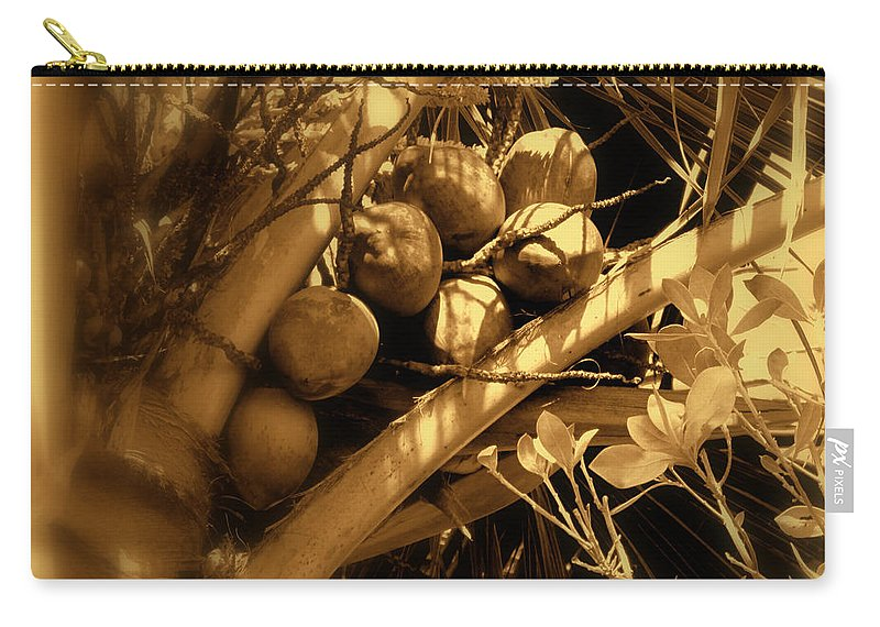 Coconuts Carry-all Pouch featuring the photograph Tropical Dreams by Susanne Van Hulst
