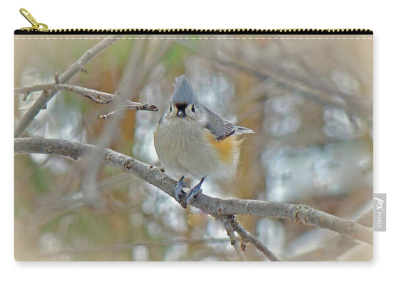 Titmouse Carry-all Pouch featuring the photograph Tufted Titmouse - Baeolophus Bicolor by Mother Nature