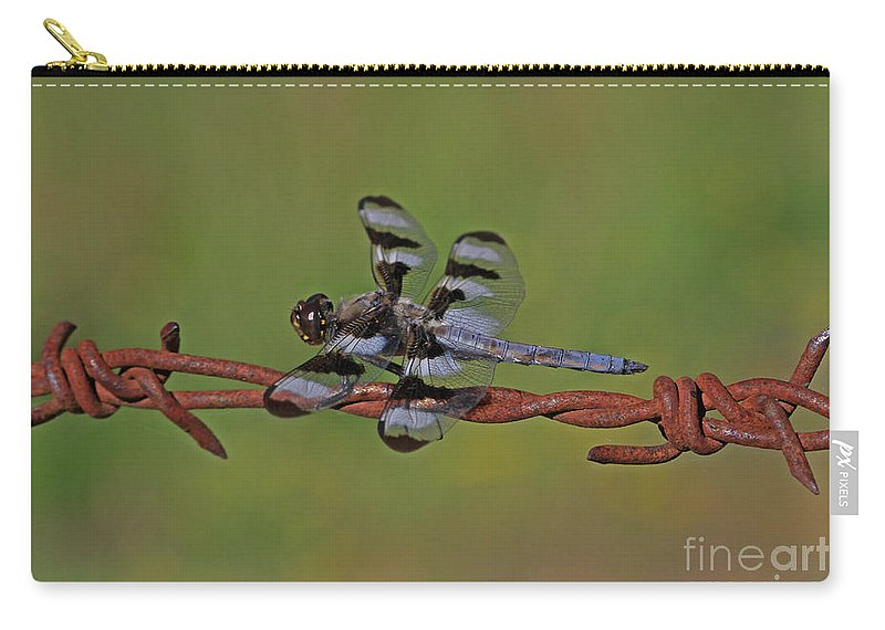 Twelve-spotted Skimmer Carry-all Pouch featuring the photograph Twelve-spotted Skimmer by Gary Wing