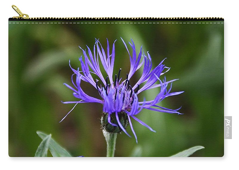 Purple Carry-all Pouch featuring the photograph Under Clear Skies by Michiale Schneider