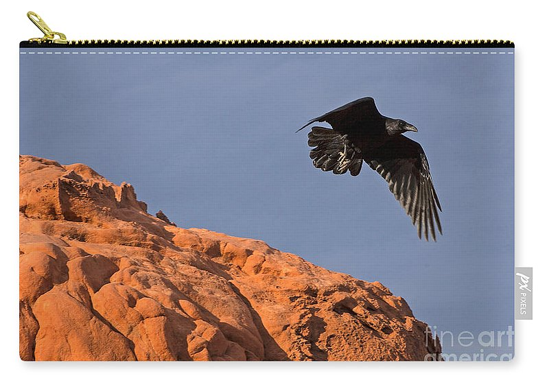 Valley Of Fire State Park Carry-all Pouch featuring the photograph Valley Of Fire State Park by Jason O Watson