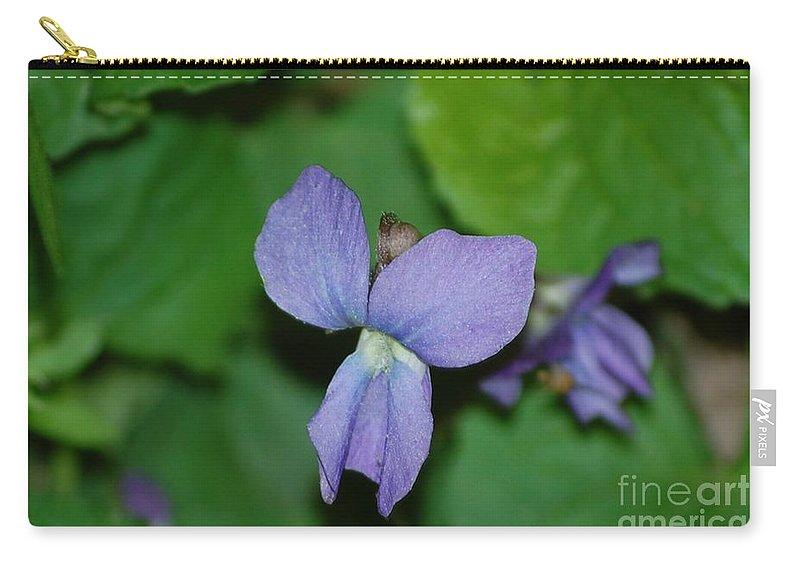 Landscape Carry-all Pouch featuring the photograph Violet by David Lane