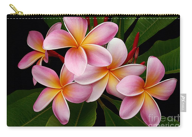 Plumeria Carry-all Pouch featuring the photograph Wailua Sweet Love by Sharon Mau
