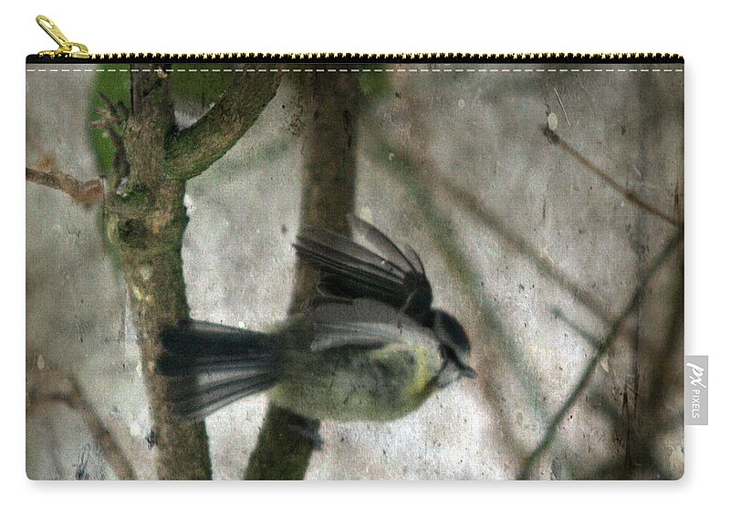 Blue Tit Carry-all Pouch featuring the photograph Waiting For Spring by Angel Tarantella