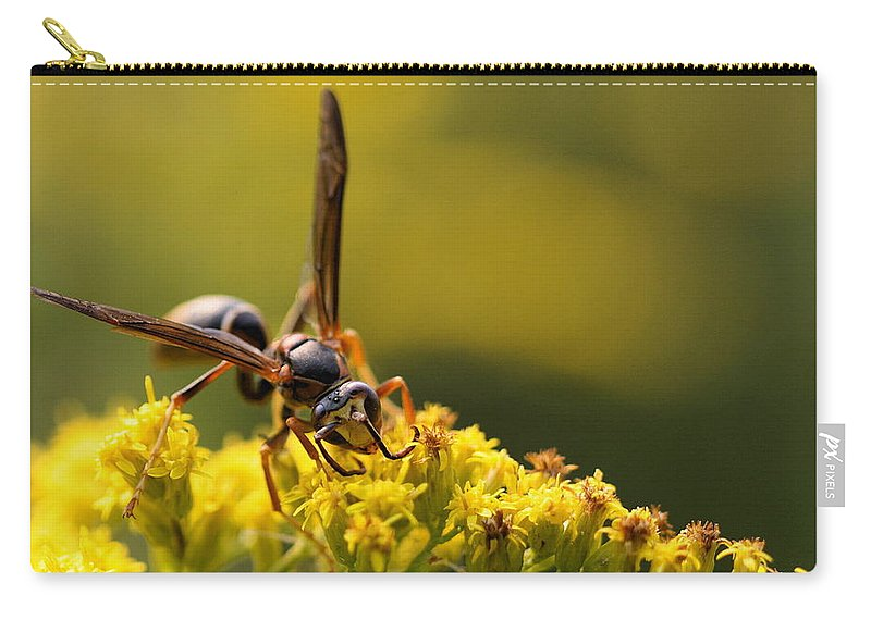 Wasp Carry-all Pouch featuring the photograph Wasp On Wildflower by Angela Rath