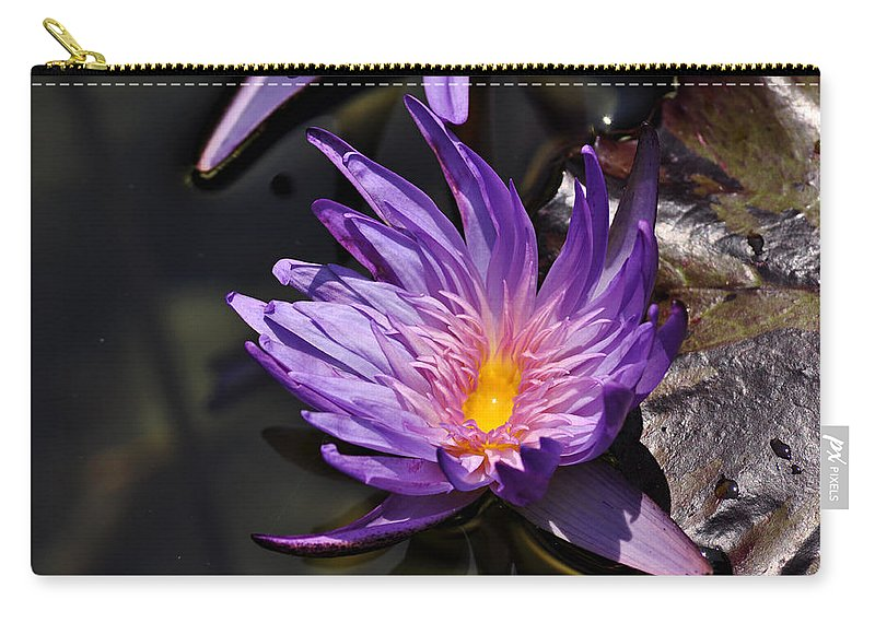 Clay Carry-all Pouch featuring the photograph Water Floral by Clayton Bruster