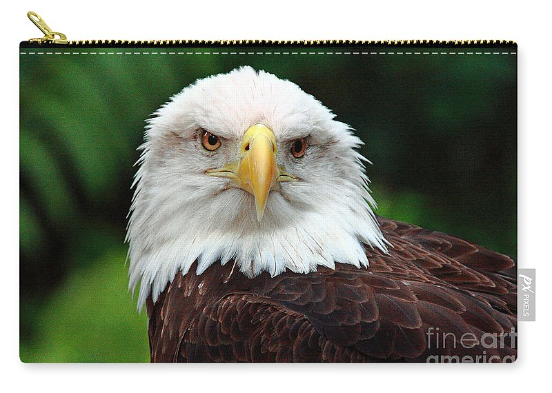Bird Carry-all Pouch featuring the photograph Where Eagles Dare by Randy Matthews