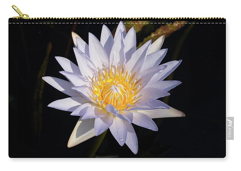 Water Lily Carry-all Pouch featuring the photograph White Water Lily by Steve Stuller