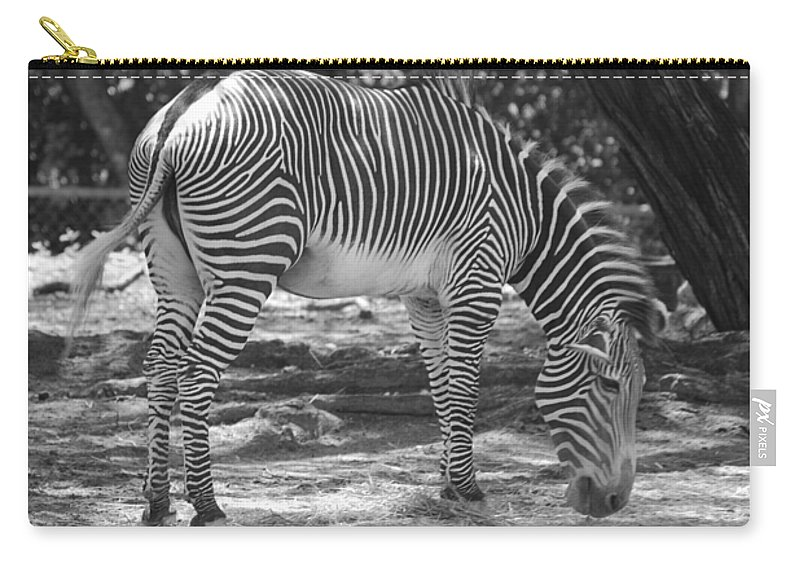 Animal Carry-all Pouch featuring the photograph Zebra In Black And White by Rob Hans