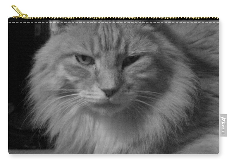 Cat Carry-all Pouch featuring the digital art Cat by Mery Moon