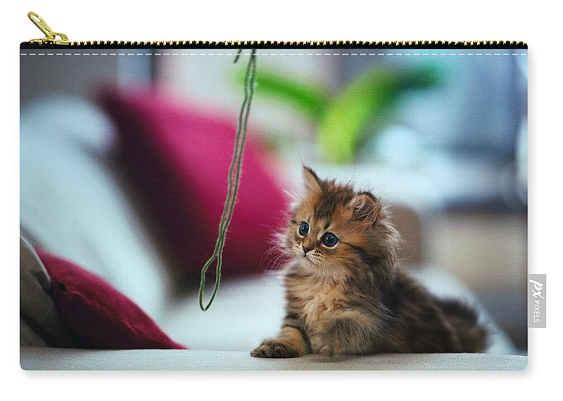 Cat Carry-all Pouch featuring the digital art Cat by Dorothy Binder