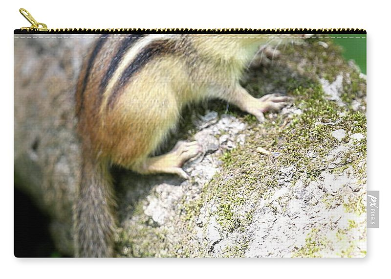 Chipmunk Carry-all Pouch featuring the photograph Chipmunk by Ken Keener