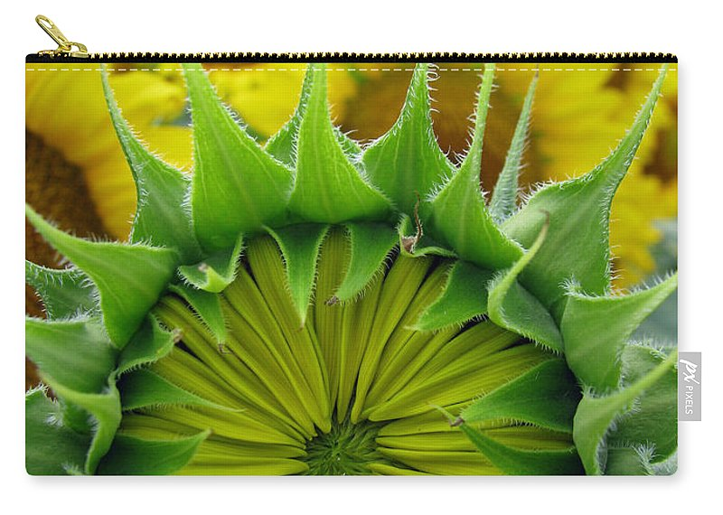 Sunflwoers Carry-all Pouch featuring the photograph Sunflower Series by Amanda Barcon