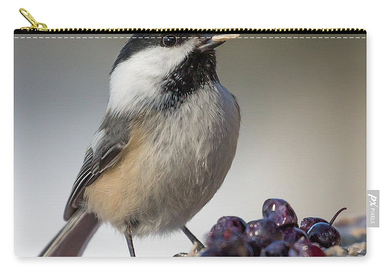 Chickadee Carry-all Pouch featuring the photograph Black Capped Chickadee by Dee Carpenter