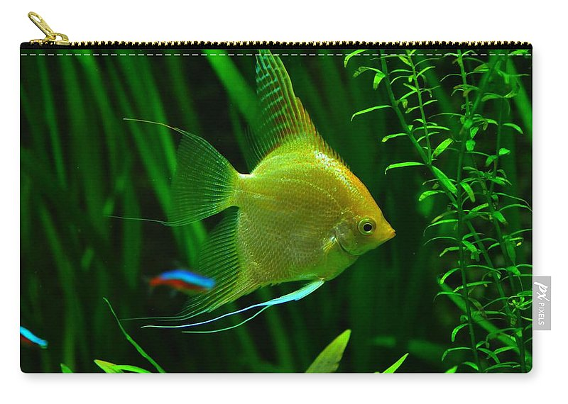 Fish Carry-all Pouch featuring the photograph Fish by FL collection