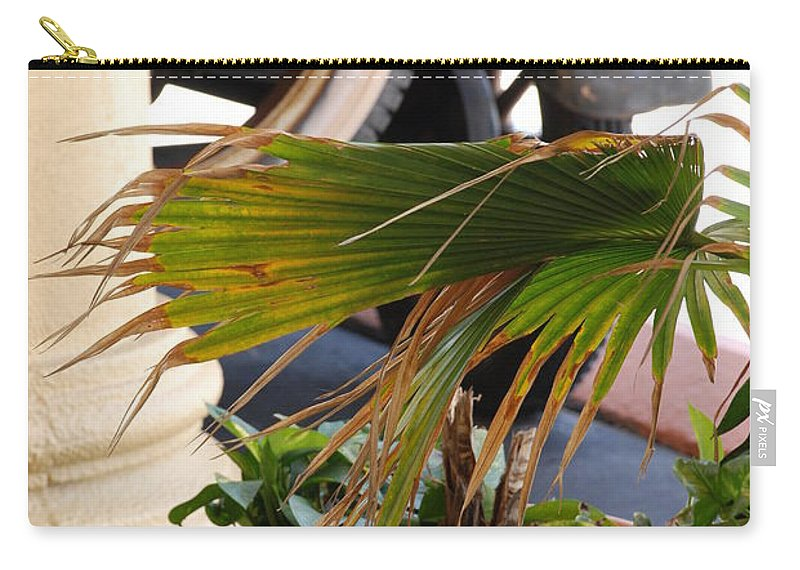 Ford Carry-all Pouch featuring the photograph 1926 Model T And Plants by Rob Hans