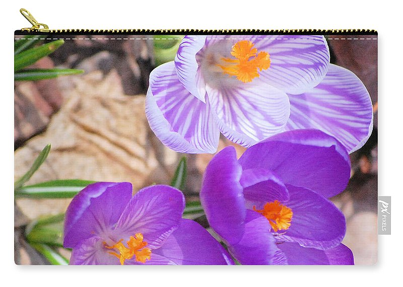 Digital Photography Carry-all Pouch featuring the photograph 1st Flower In Garden 2010 Photo by David Lane