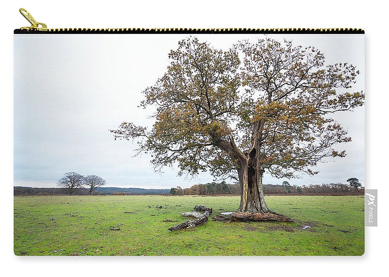 Svetlana Sewell Carry-all Pouch featuring the photograph Autumn Tree by Svetlana Sewell