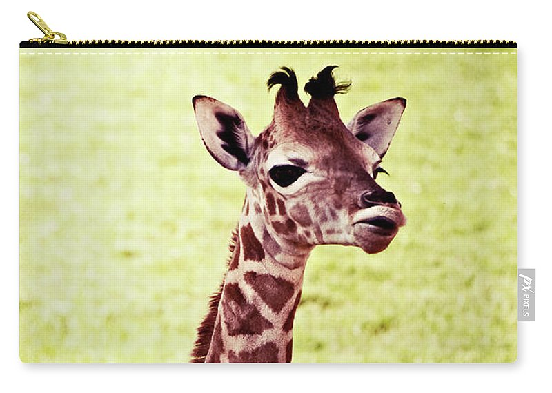 Baby Carry-all Pouch featuring the photograph Baby Giraffe by Jim And Emily Bush