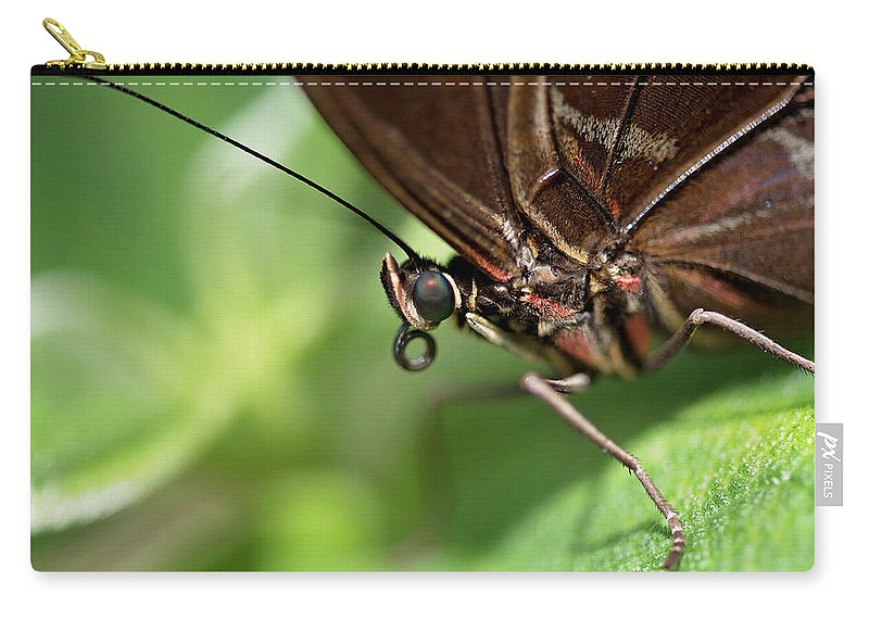 Carry-all Pouch featuring the pyrography Butterfly Garden by Heather Fiedler
