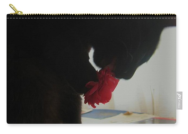 Photograph Cat Black Red Flower Camellia Carry-all Pouch featuring the photograph Cat Eating Camellia by Seon-Jeong Kim